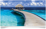 Paradise ANZ Credit Card Maldives Visa Credit Card