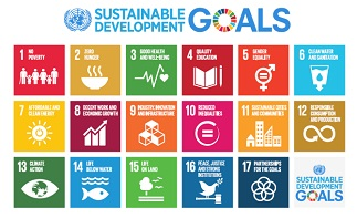 Supporting the sustainable development goals