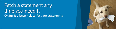 Fetch a statement any time you need it.Online is a better place for your statements